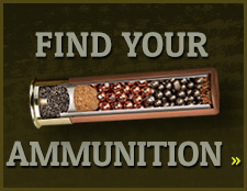 Find Your Ammunition